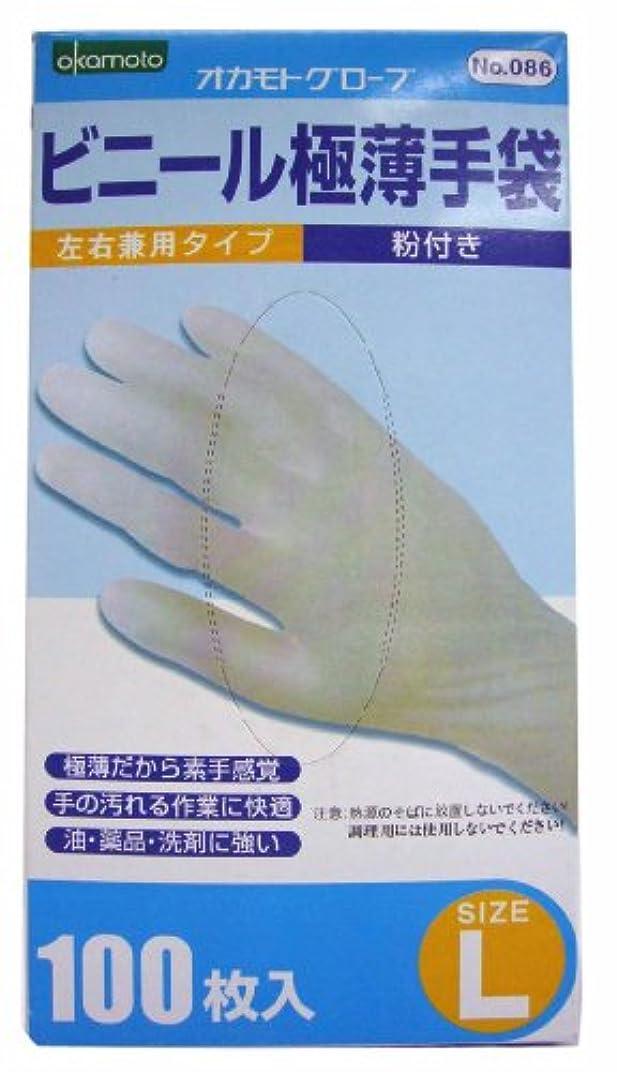 閉じる乗って磨かれたビニール極薄手袋 粉付き 100枚入 L