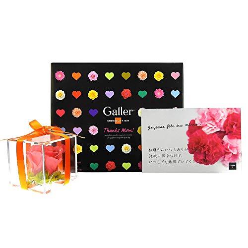 母の日ギフト【 Galler (ガレー) ベルギー王室御用達 チョコレート 】ミニバー 12本入 プリザーブドフラワーセット (メッセージカード付き)