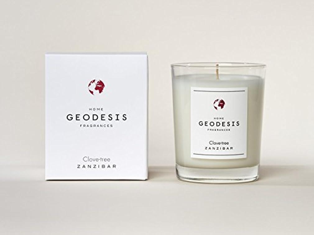 合理化ミント鮮やかなGEODESIS(ジェオデジス) キャンドル(メタリックグラス) 220g 「クローブツリー」 3030761322001