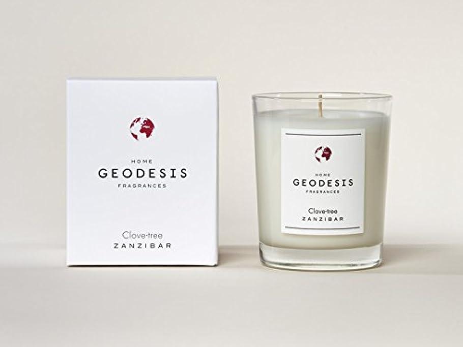 小康パートナー労働GEODESIS(ジェオデジス) キャンドル(メタリックグラス) 220g 「クローブツリー」 3030761322001