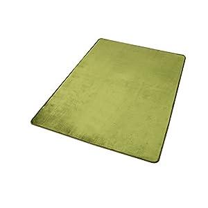 アイリスプラザ 心地よいサラふわ触感 ラグ カーペット 洗える フランネル 抗菌防臭 グリーン 130×185cm ホットカーペット対応 滑り止め付き