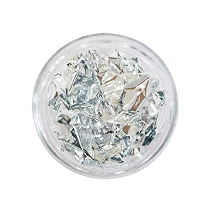 リードに変わる許可するBonnail(ボンネイル) 箔セレクション プラチナシルバー