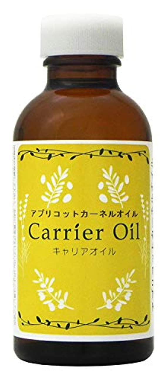 祝うジュニア調べるアプリコットカーネルオイル (杏仁油 ? アプリコットオイル) キャリアオイル 140ml
