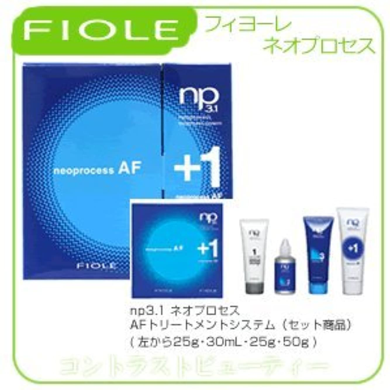 作成者スリンクふけるフィヨーレ NP3.1 ネオプロセス AF トリートメントシステム FIOLE ネオプロセス