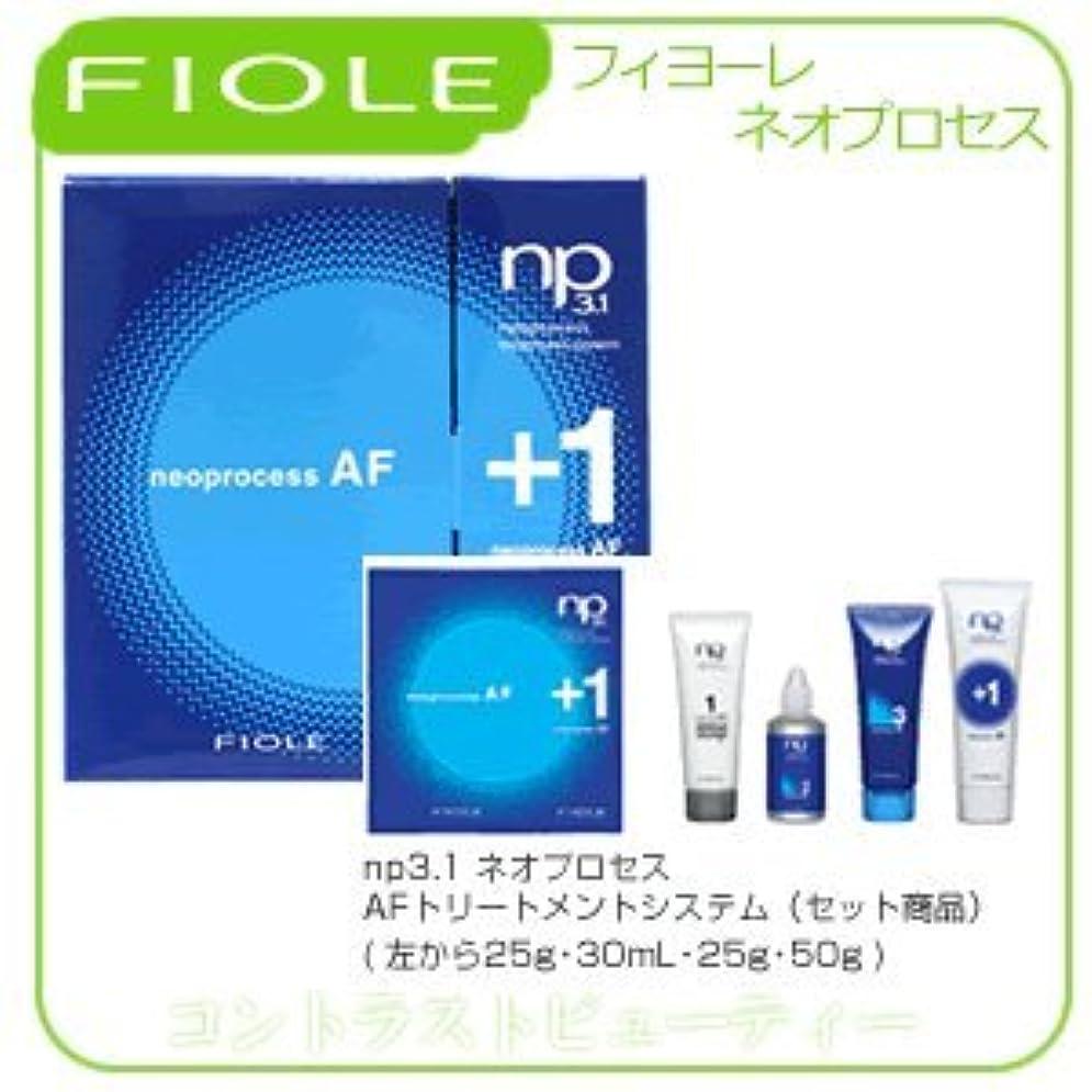 耐えるバー区【X3個セット】 フィヨーレ NP3.1 ネオプロセス AF トリートメントシステム FIOLE ネオプロセス
