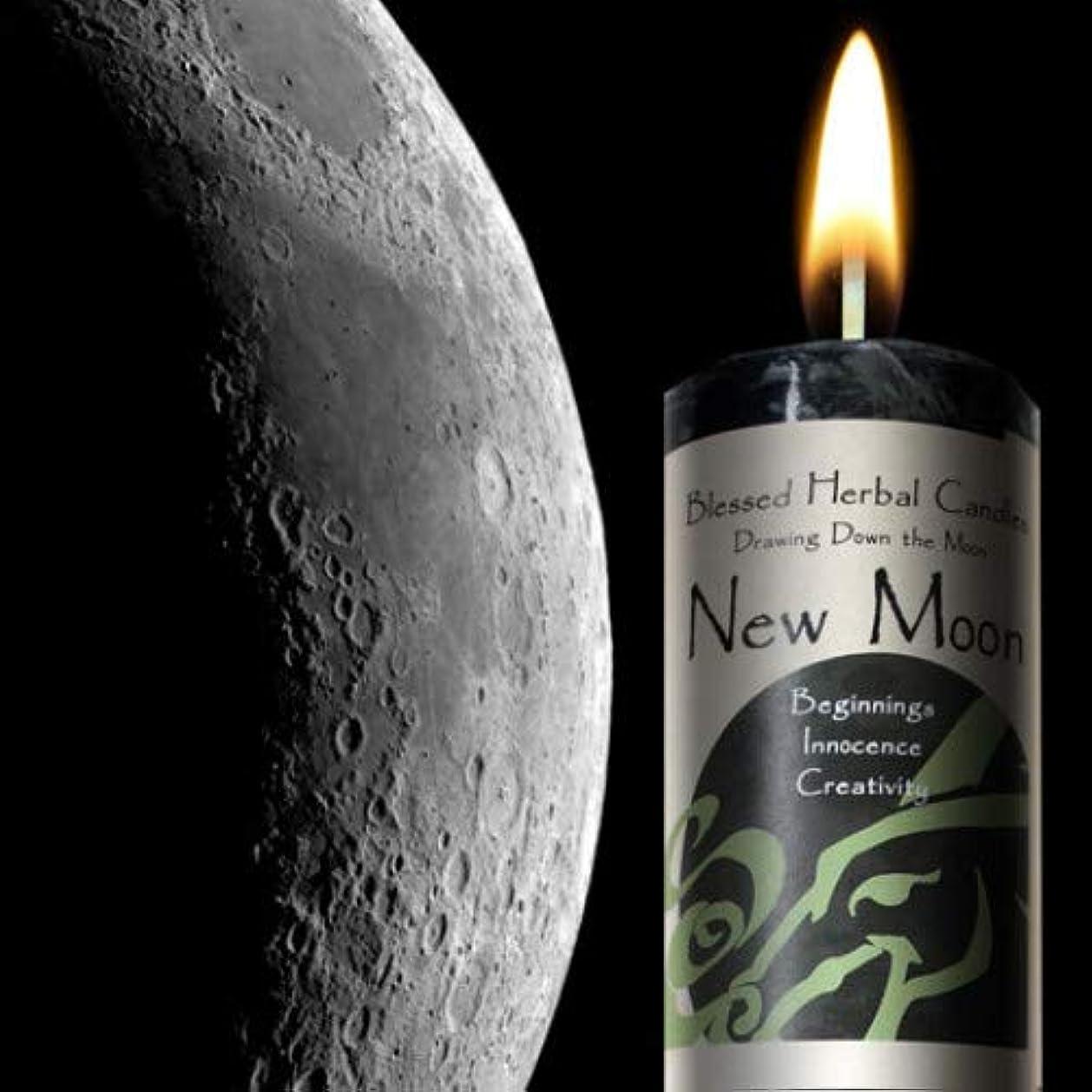 付けるシロクマ空図面Down theムーン – New Moon