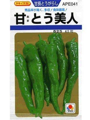 タキイ種苗 トウガラシ 甘とう美人 APE041
