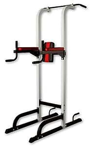 IROTEC(アイロテック)チン&ディップスタンド/ 懸垂器具