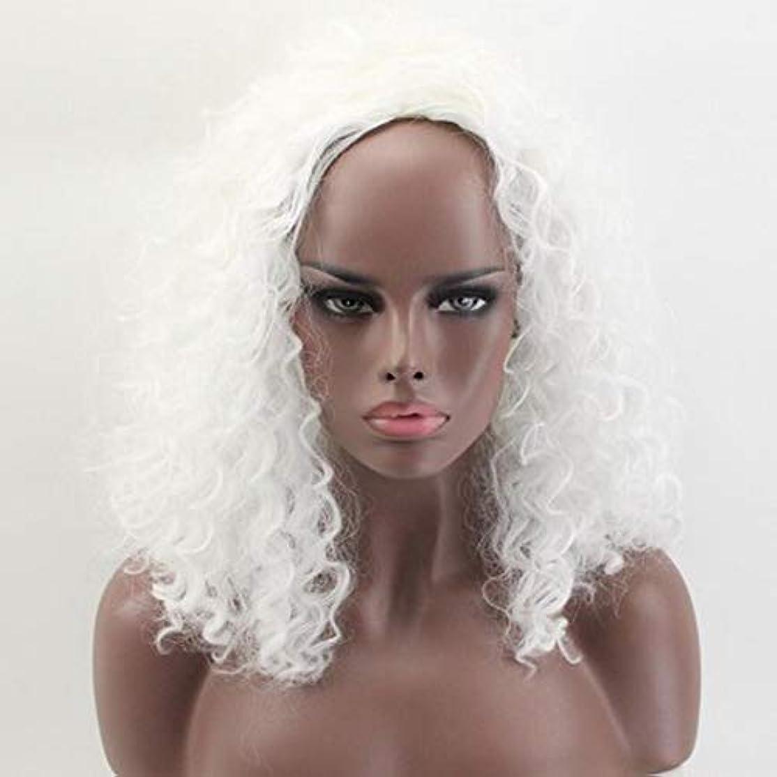 女性のための色のかつら、ポニーテールのロリータカーリーコスプレウィッグ、高密度温度合成ウィッグコスプレヘアウィッグ、耐熱繊維ヘアウィッグ
