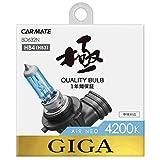 カーメイト 車用 ハロゲン ヘッドライト GIGA エアーネオ HB4/3 4200K 1150lm ホワイト BD632N