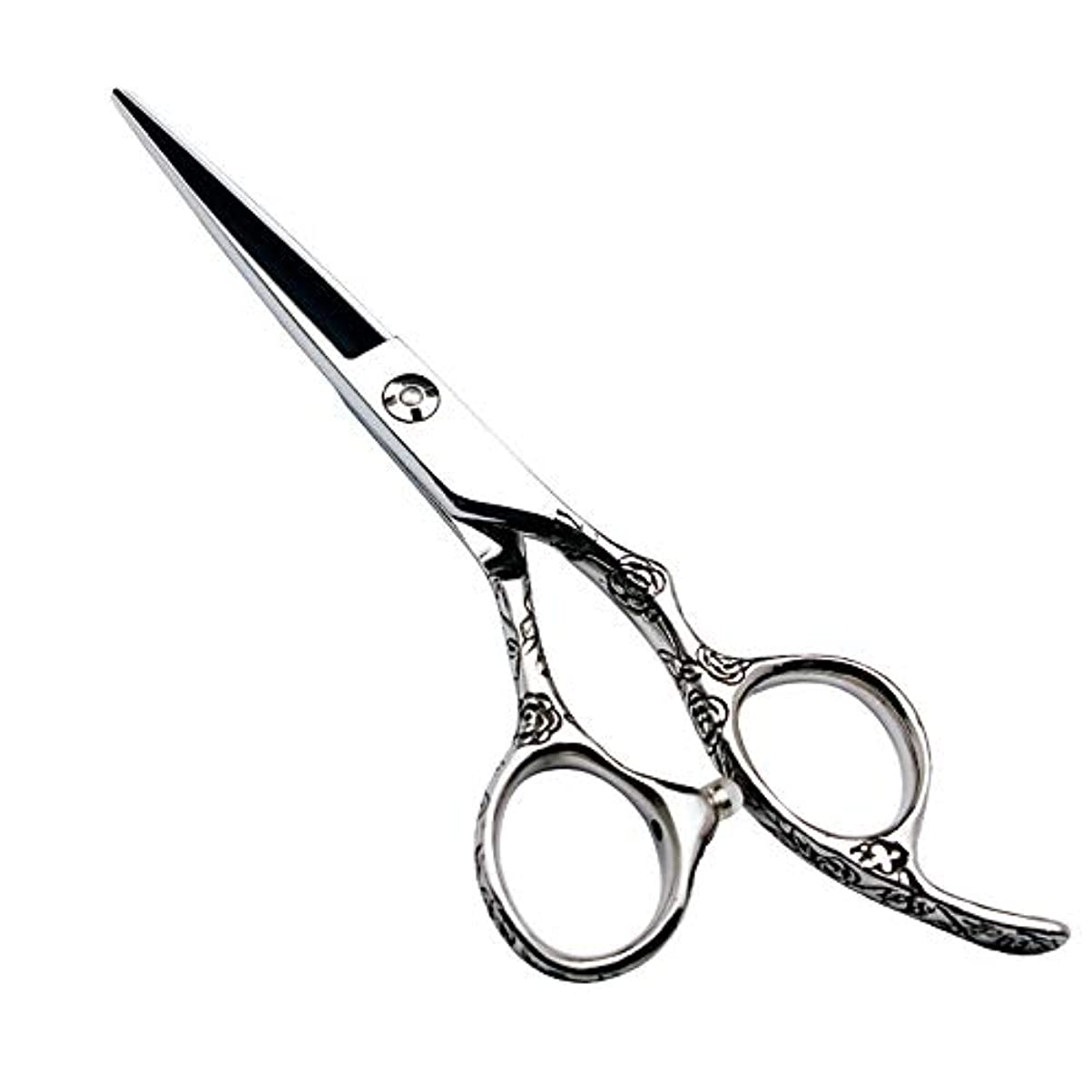 申し立てアウトドアまとめるGoodsok-jp 6インチの美容院の専門の理髪セットの理髪はさみのローズハンドル440C (色 : Silver)