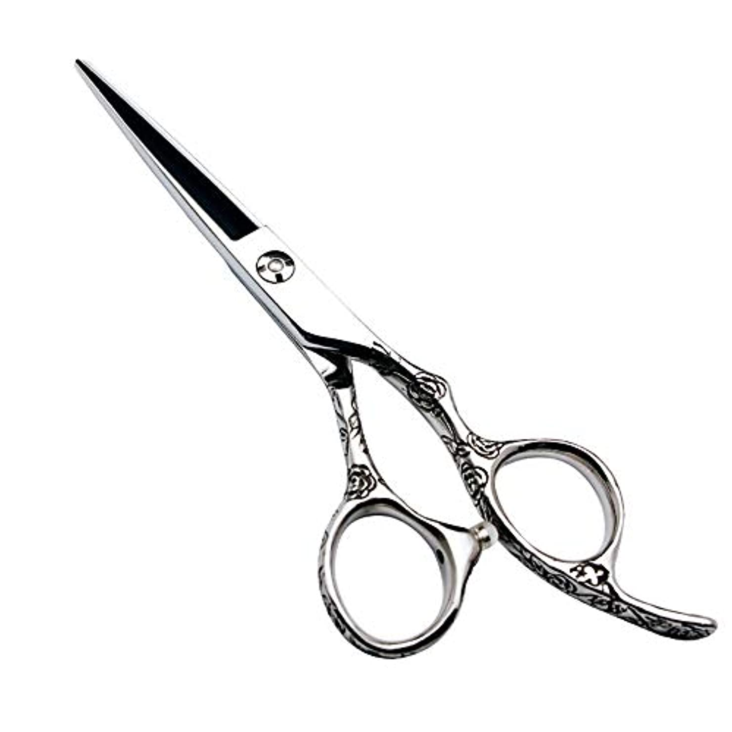 突撃猟犬哀6インチの美容院の専門の理髪セットの理髪はさみ、440Cローズのハンドル ヘアケア (色 : Silver)