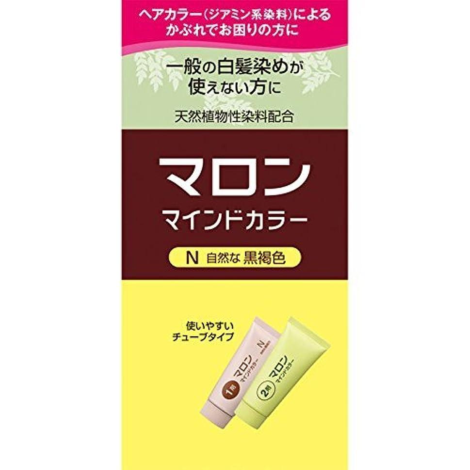 顔料コーン中央ヘンケルライオンコスメティックス マロン マインドカラー N 自然な黒褐色 70G+70G (医薬部外品)