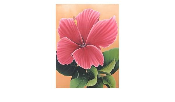 Amazonイラスト絵画ハイビスカス オレンジおしゃれな花の絵画