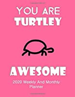 You Are Turtley Awesome 2020 Weekly And Monthly Planner: Turtle Gifts Yearly Planner For Tortoise Lovers With Year-At--A-Glance Page 8.5 x 11 inches - Celebration