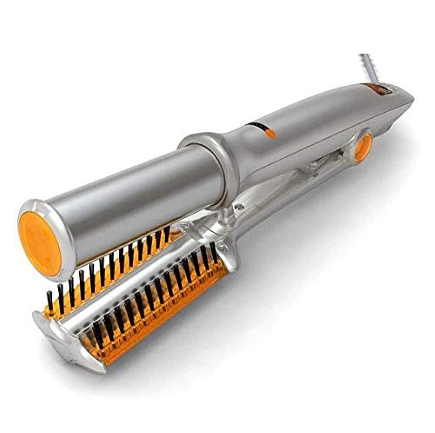 安全店主調整可能髪の効果的な保護サーモスタット自動ウェットとドライストレートヘアアイロン b1120 (Color : -, Size : -)