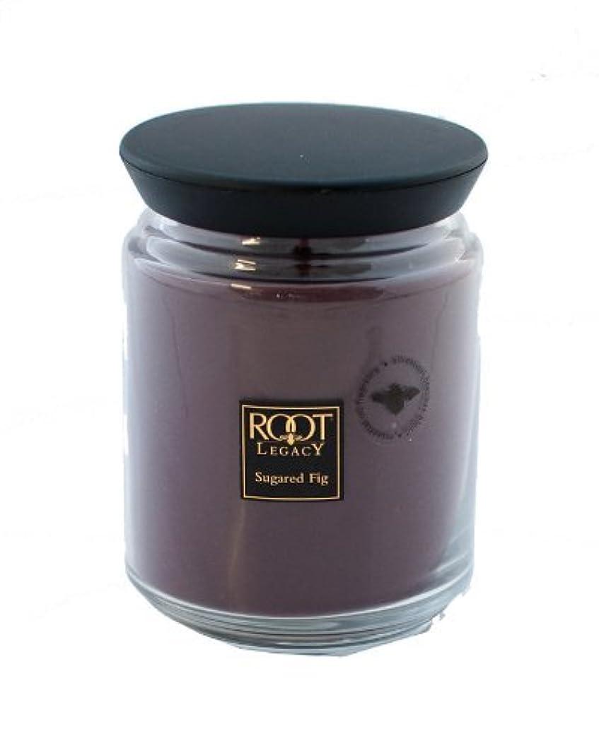 以上歯痛時々ルートキャンドルQueen Bee Jar Large Sugared Fig Candleルートキャンドルで、ワックス、パープル