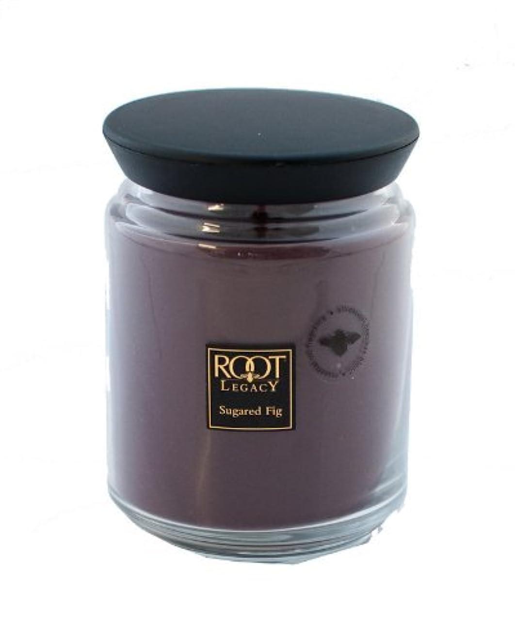 足直立無駄ルートキャンドルQueen Bee Jar Large Sugared Fig Candleルートキャンドルで、ワックス、パープル