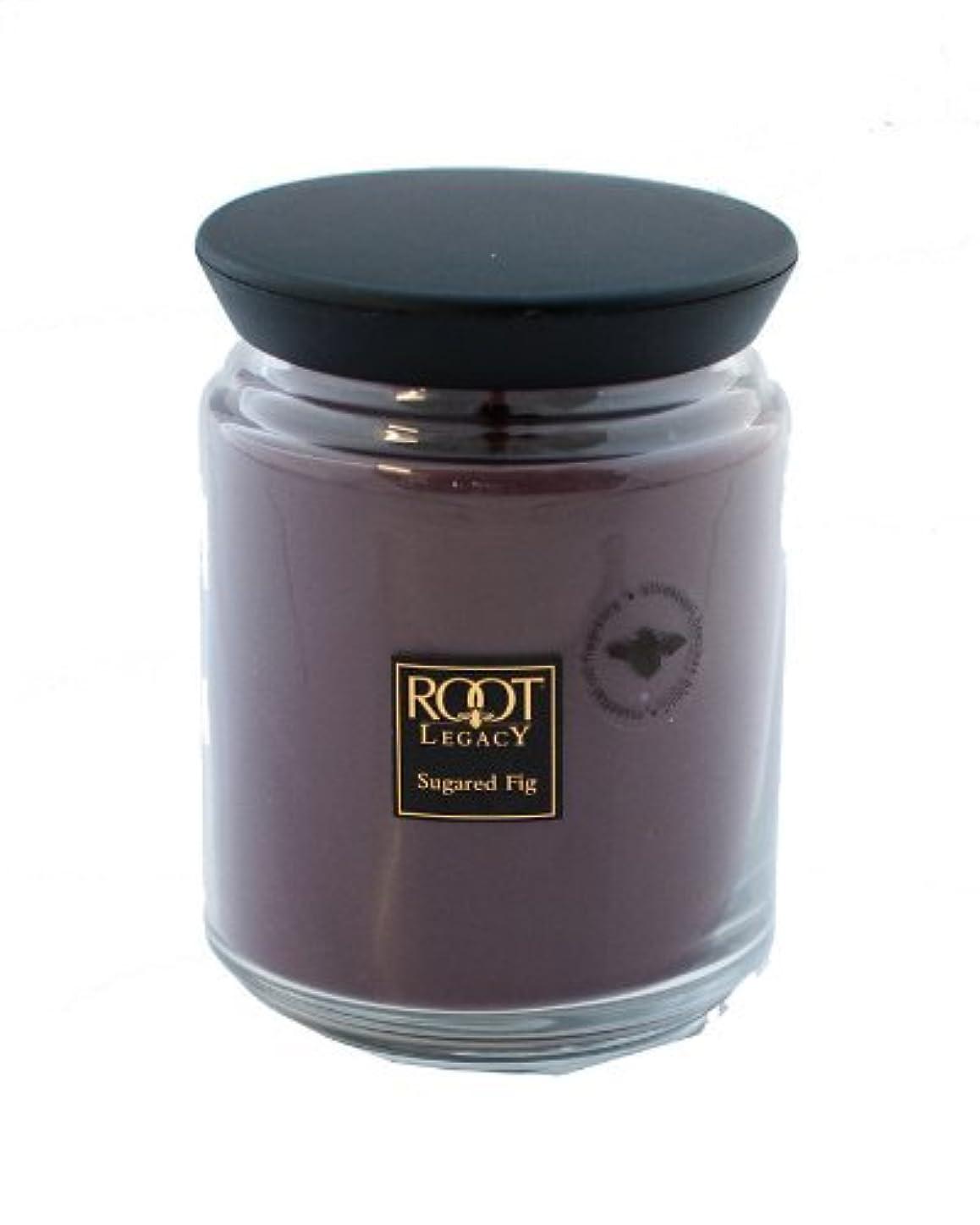 遺体安置所刺繍部屋を掃除するルートキャンドルQueen Bee Jar Large Sugared Fig Candleルートキャンドルで、ワックス、パープル