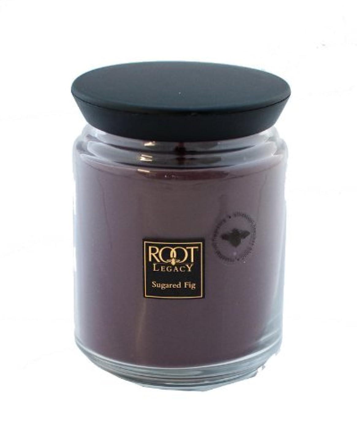 ルートキャンドルQueen Bee Jar Large Sugared Fig Candleルートキャンドルで、ワックス、パープル