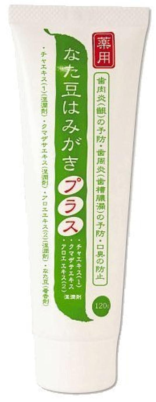 連帯勇敢な激しい薬用 なた豆はみがきプラス 医薬部外品 120g×2本セット