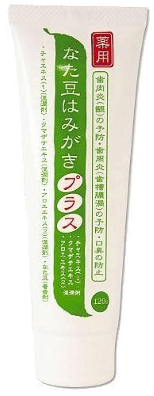 インテリアのパシフィック薬用 なた豆はみがきプラス 医薬部外品 120g×2本セット