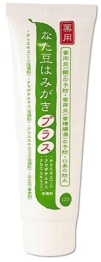 ホーン罪人チャンス薬用 なた豆はみがきプラス 医薬部外品 120g×2本セット
