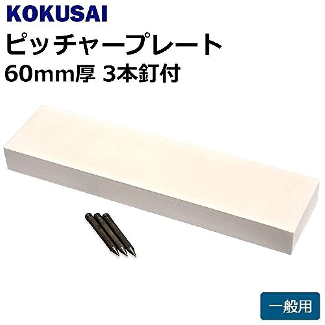 画面着実に原因コクサイ KOKUSAI ピッチャープレート 一般用 60mm厚 3本釘付 1枚 RB560