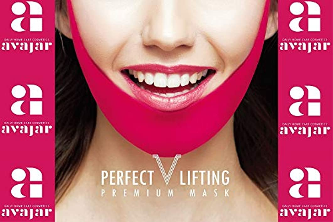 パイル避ける受けるPERFECT V LIFTING PREMIUM MASK