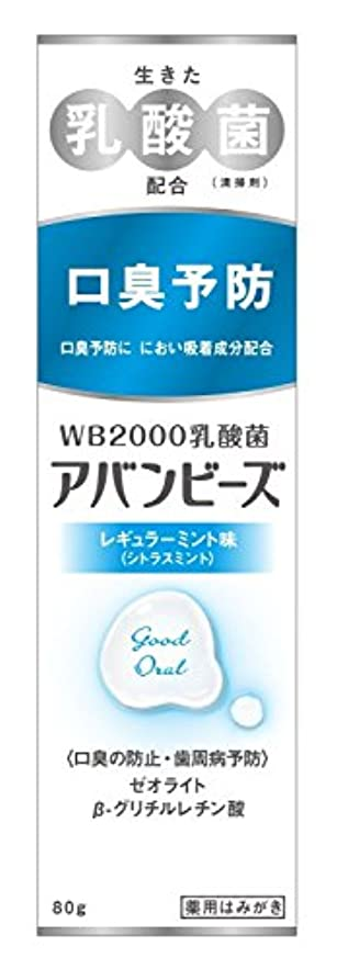 補正禁止インタフェース【セット品】わかもと製薬 アバンビーズ レギュラーミント味 80g×2本セット