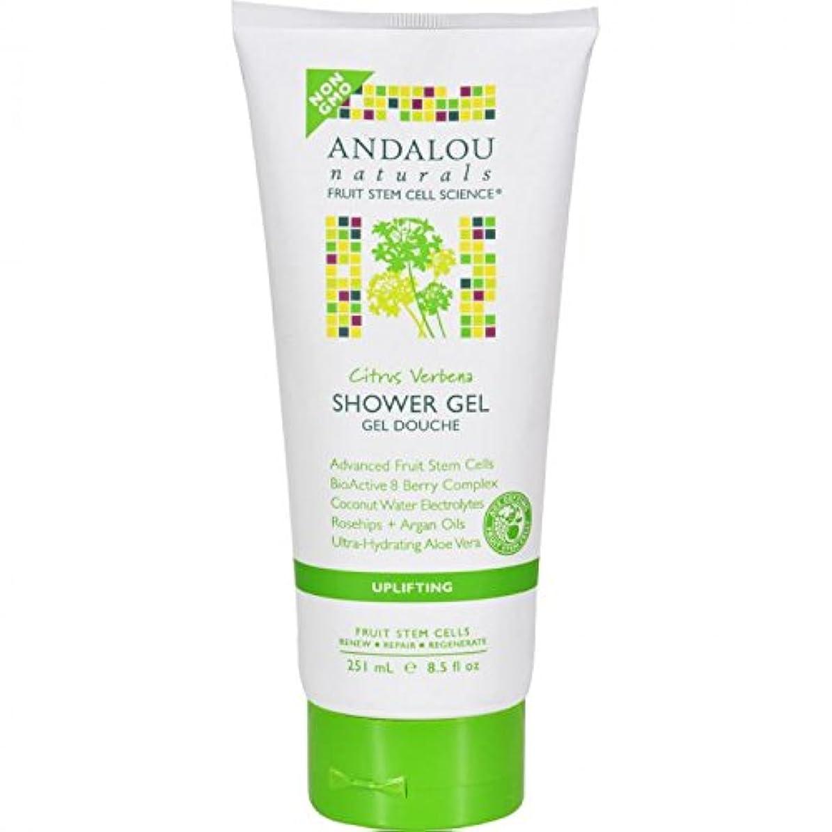 道徳教育くすぐったい非難Shower Gel - Citrus Verbena Uplifting - 8.5 fl oz by Andalou Naturals