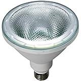 ELPA LED電球 ビーム球形 1000ルーメン E26 昼光色 LDR14D-M-G050