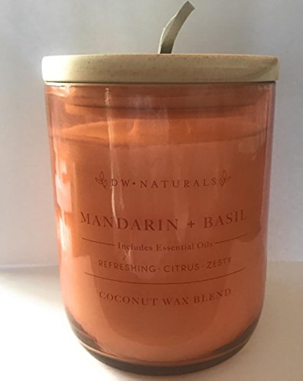 後退するアーティファクト先史時代のDW Naturals Mandarin and Basil CoconutワックスブレンドCandle 17.6 Oz