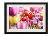 春の花、チューリップ 風景の写真 黒色の木製フレーム 額縁 壁掛け ホーム装飾画 装飾的な絵画 壁の装飾 ポスター(30x40cm)