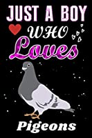 Just a Boy who loves Pigeons: Pigeons Lover notebook or dairy, Perfect Pigeons lovers Notebook gift for Boy