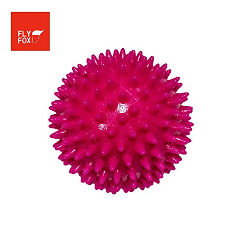 接地衝突する周りFLYFOX リフレクションボール (Shocking Pink)