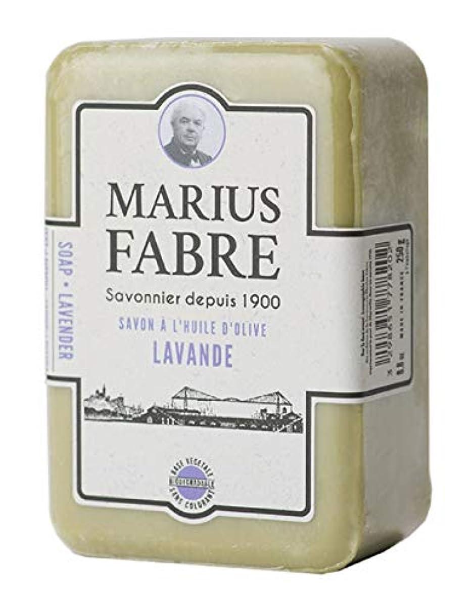 塩フラグラント助けになるサボンドマルセイユ 1900 ラベンダー 250g