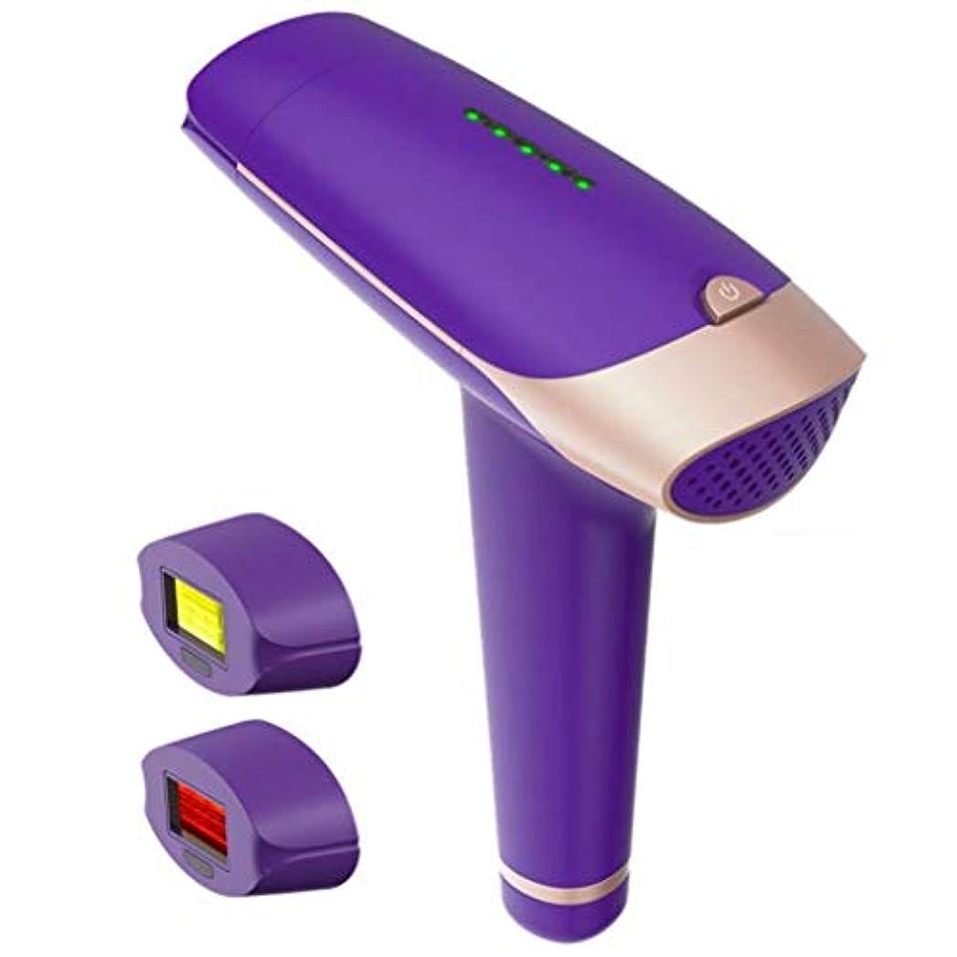 脱毛器、体の顔とビキニと脇の下の安全で痛みのないハンドヘルドのための2イン1充電式レーザー脱毛装置