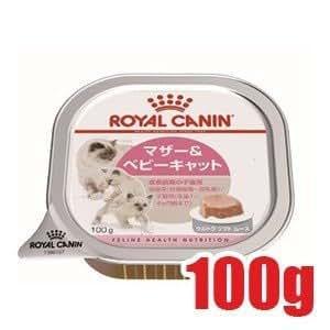 ロイヤルカナン FHN -WET ベビーキャット 猫用 100g×6個