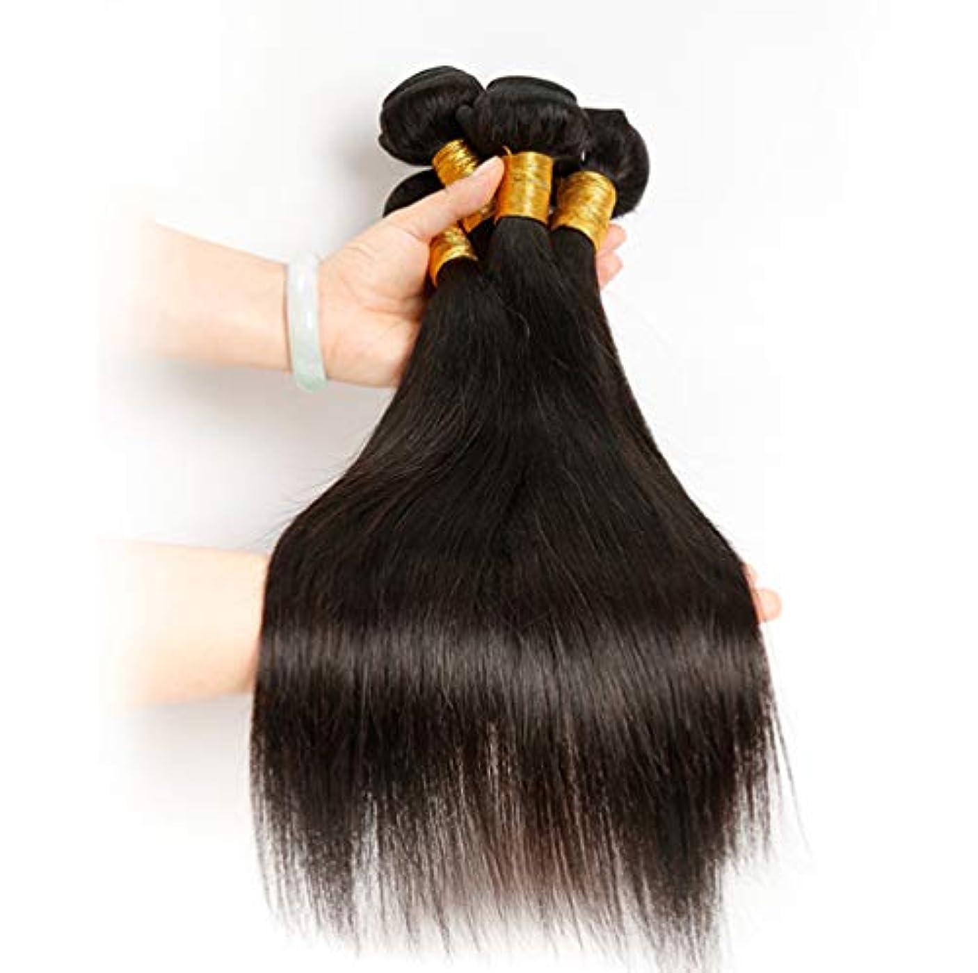 かわす植生の前で女性ブラジル人髪織り人毛ストレートリアルレミーナチュラルヘアーウィーブエクステンションよこ糸フルヘッド(3バンドル)