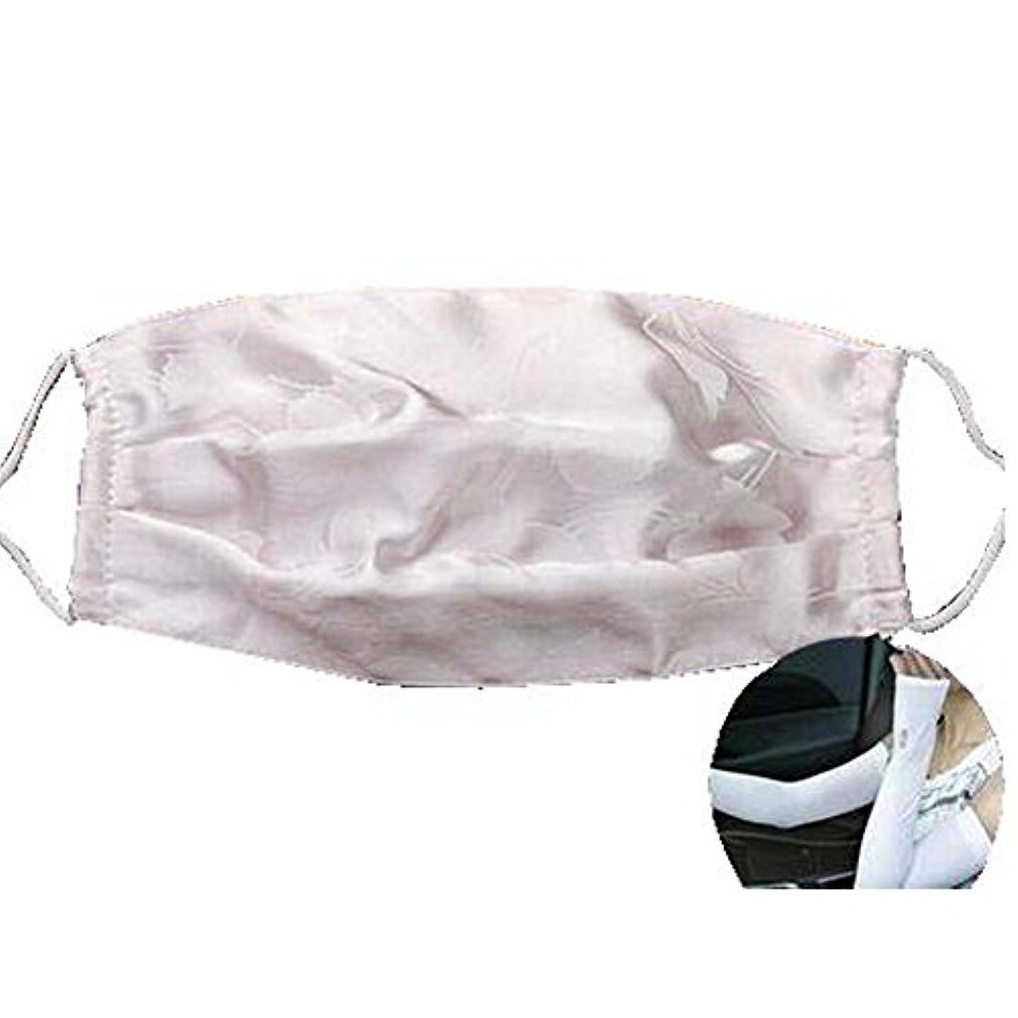 マスクダストマスクアンチ汚染活性化シルクマスクとシルクアームスリーブ