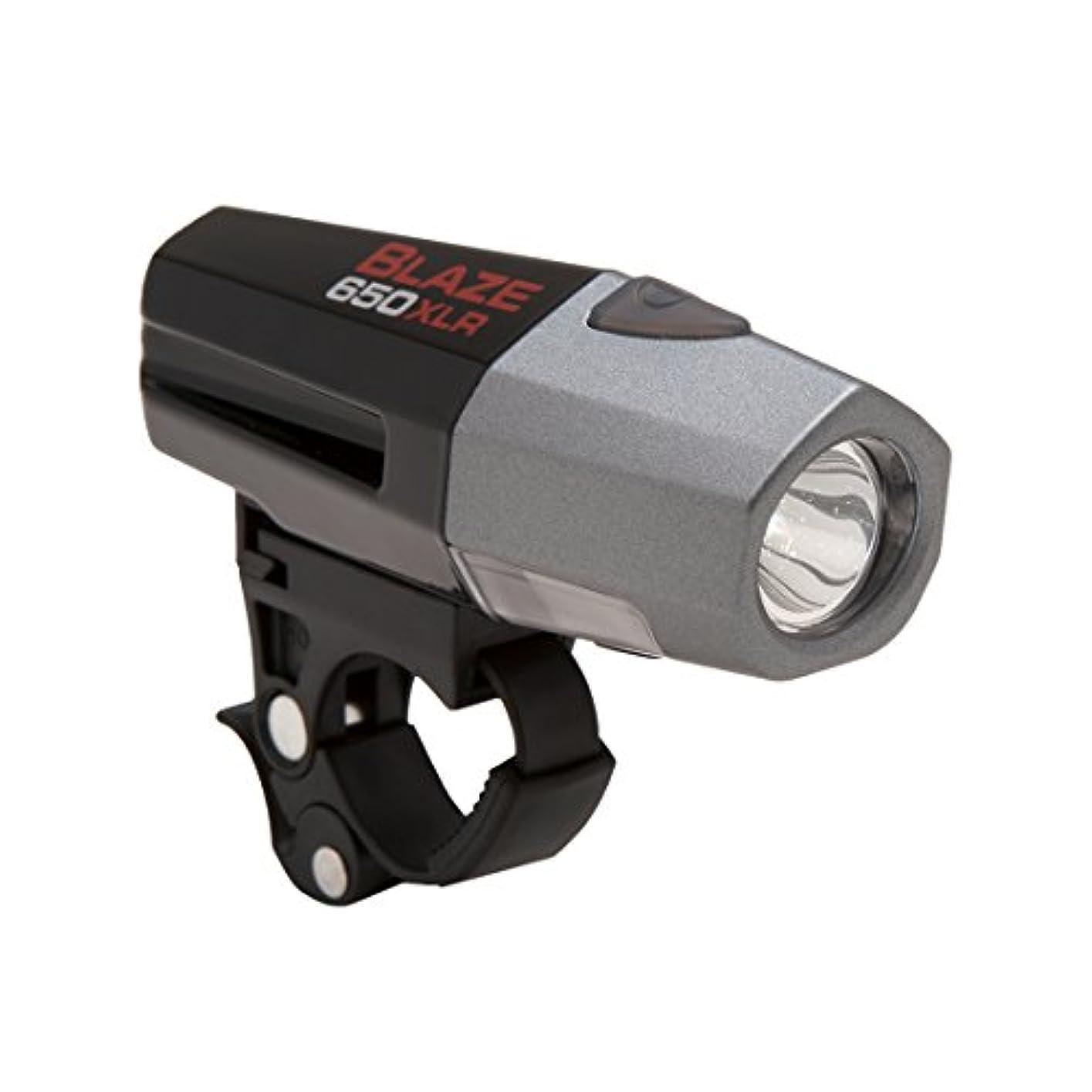 落ち着いて自治対人Planet Bike Blaze 650 XLR Rechargeable Headlight by Planet Bike