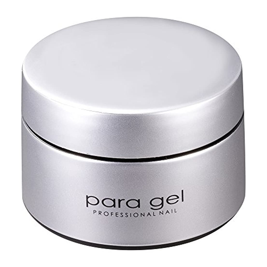 ライム辞任する魂para gel アートカラージェル AMD46 テラコッタオレンジ 2g