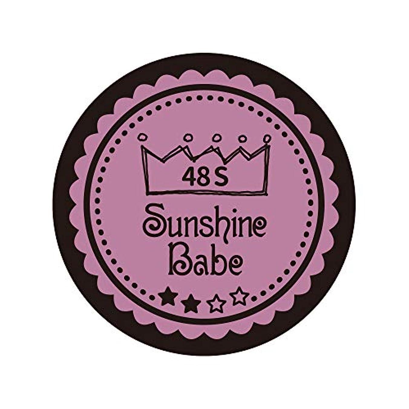 一般化する気分が悪い置くためにパックSunshine Babe カラージェル 48S ペールモーブ 4g UV/LED対応