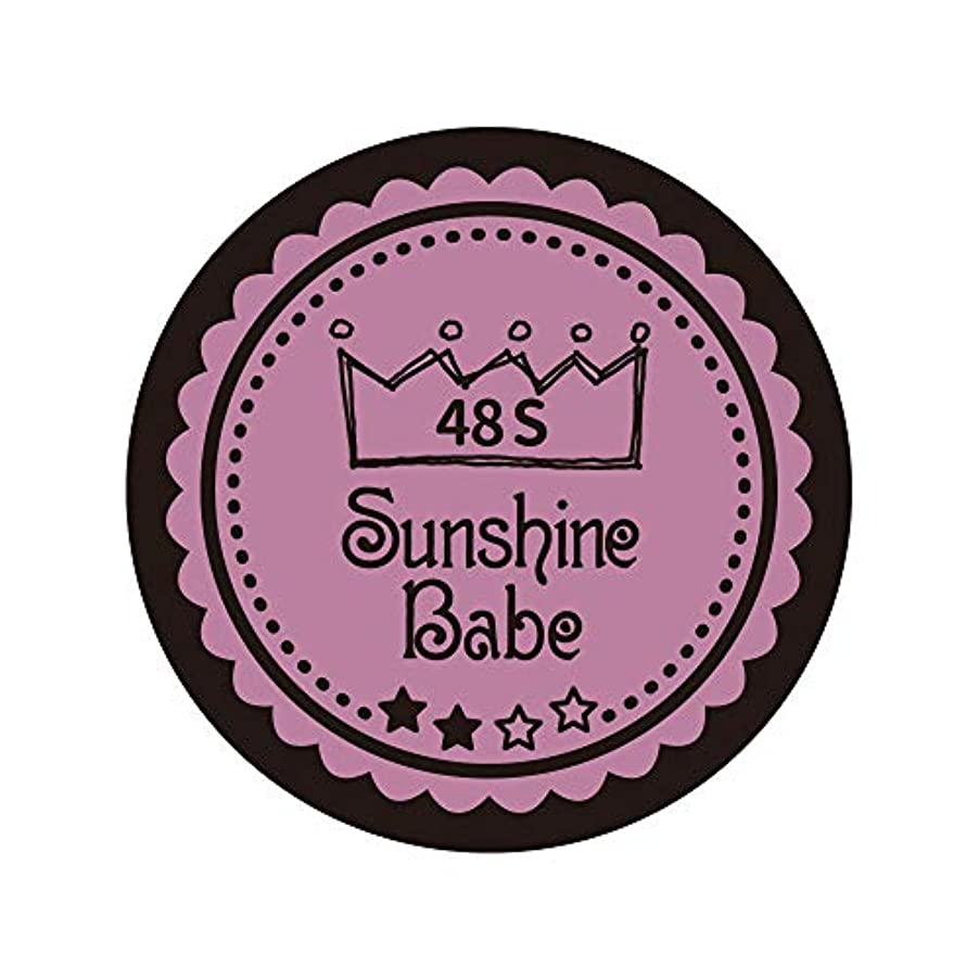 和らげる岩デイジーSunshine Babe カラージェル 48S ペールモーブ 4g UV/LED対応