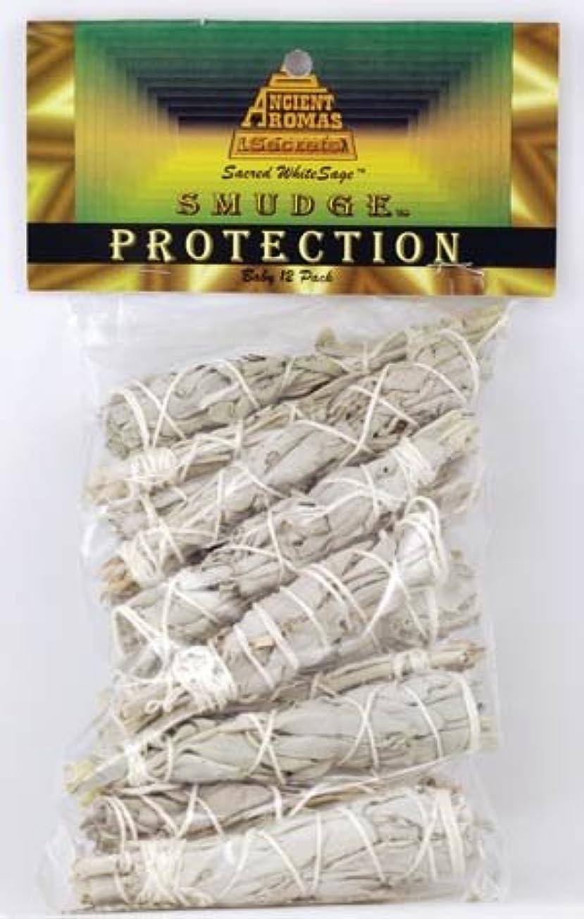 交流するコカイン軽くベビーホワイトセージSmudge Stick 12パック( rsws12 ) -