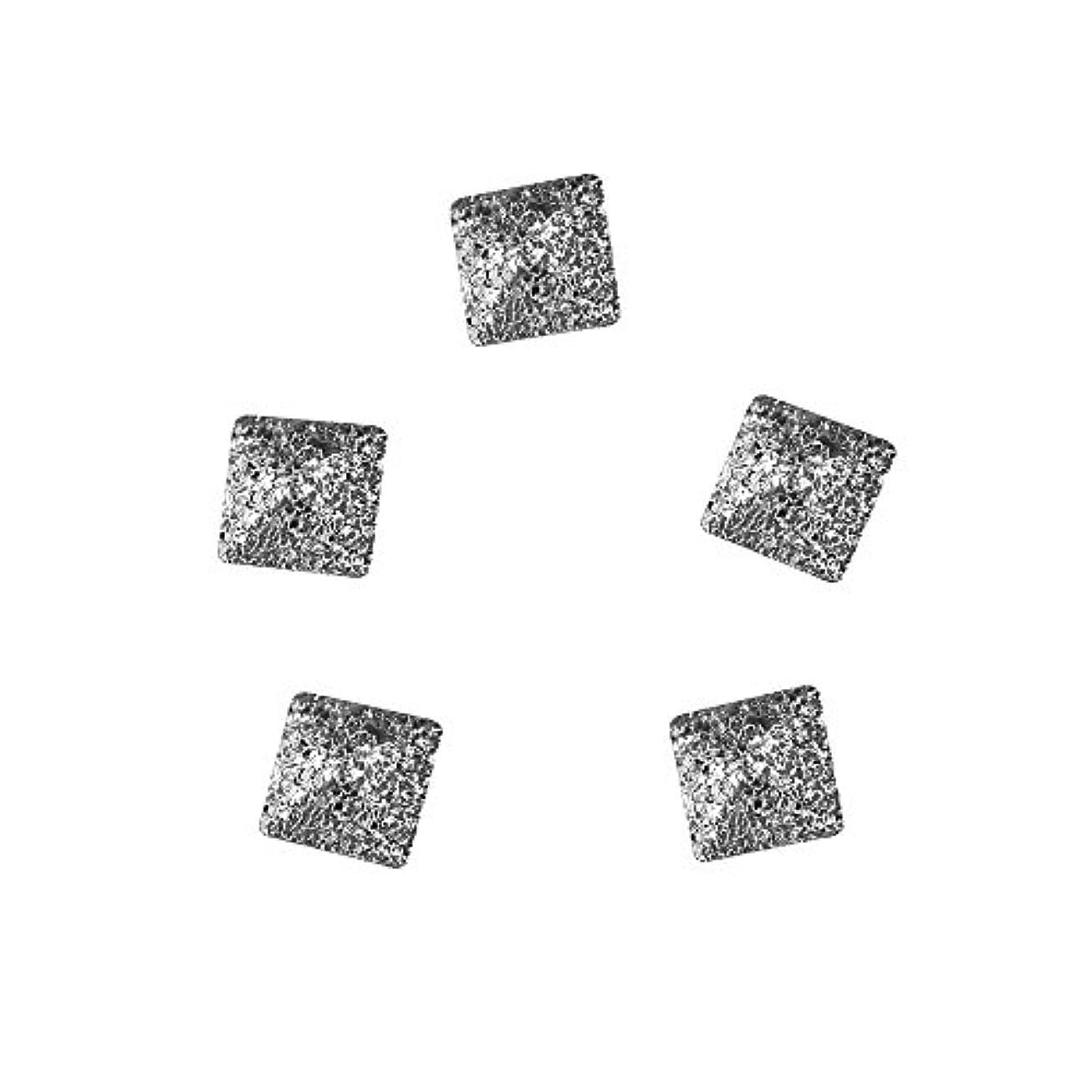 飛躍刺繍投資Bonnail ラフスタッズシルバースクエア 2mm