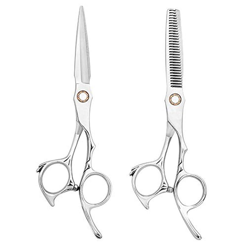 高品質の髪のはさみ理髪はさみのセット間伐はさみ6インチの女性と男性のためのレザーケースと精密カットステンレス鋼,Silver,6inch