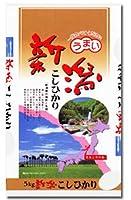 【玄米】 新潟県 栃尾産 コシヒカリ 令和元年度産 (玄米, 10kg)