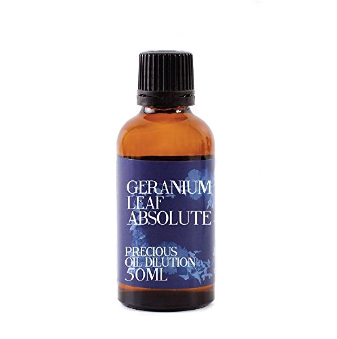 司教アーティファクト法律Geranium Leaf Absolute Oil Dilution - 50ml - 3% Jojoba Blend